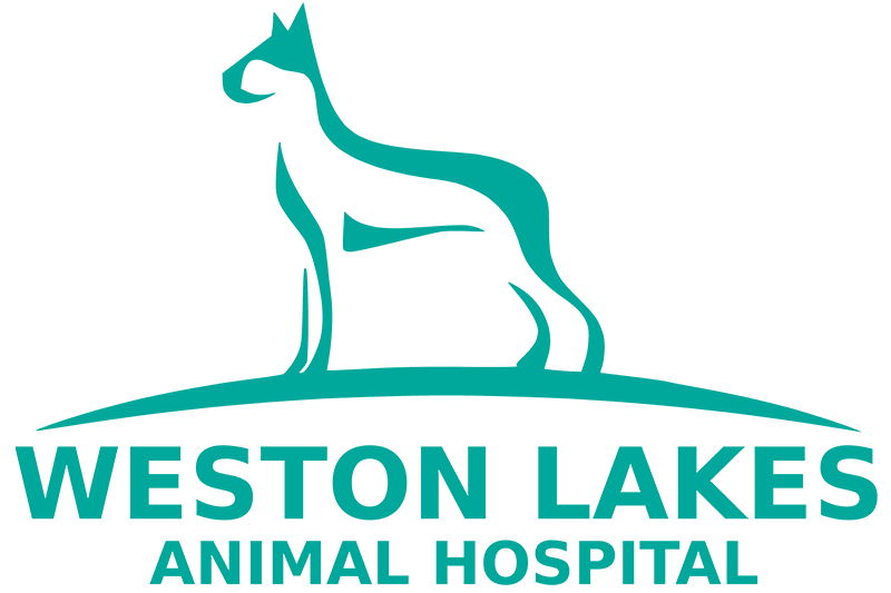 Weston Lakes Animal Hospital